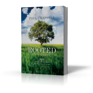 Rooted in christ book