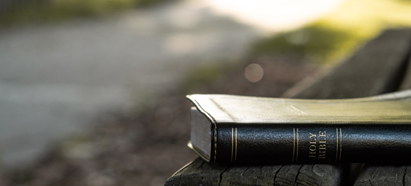 7 Encouraging Trends of Independent Baptist Millennial Leaders