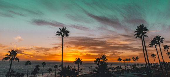 11 Post-Election Reasons I Am Grateful to Be a Christian Living in California